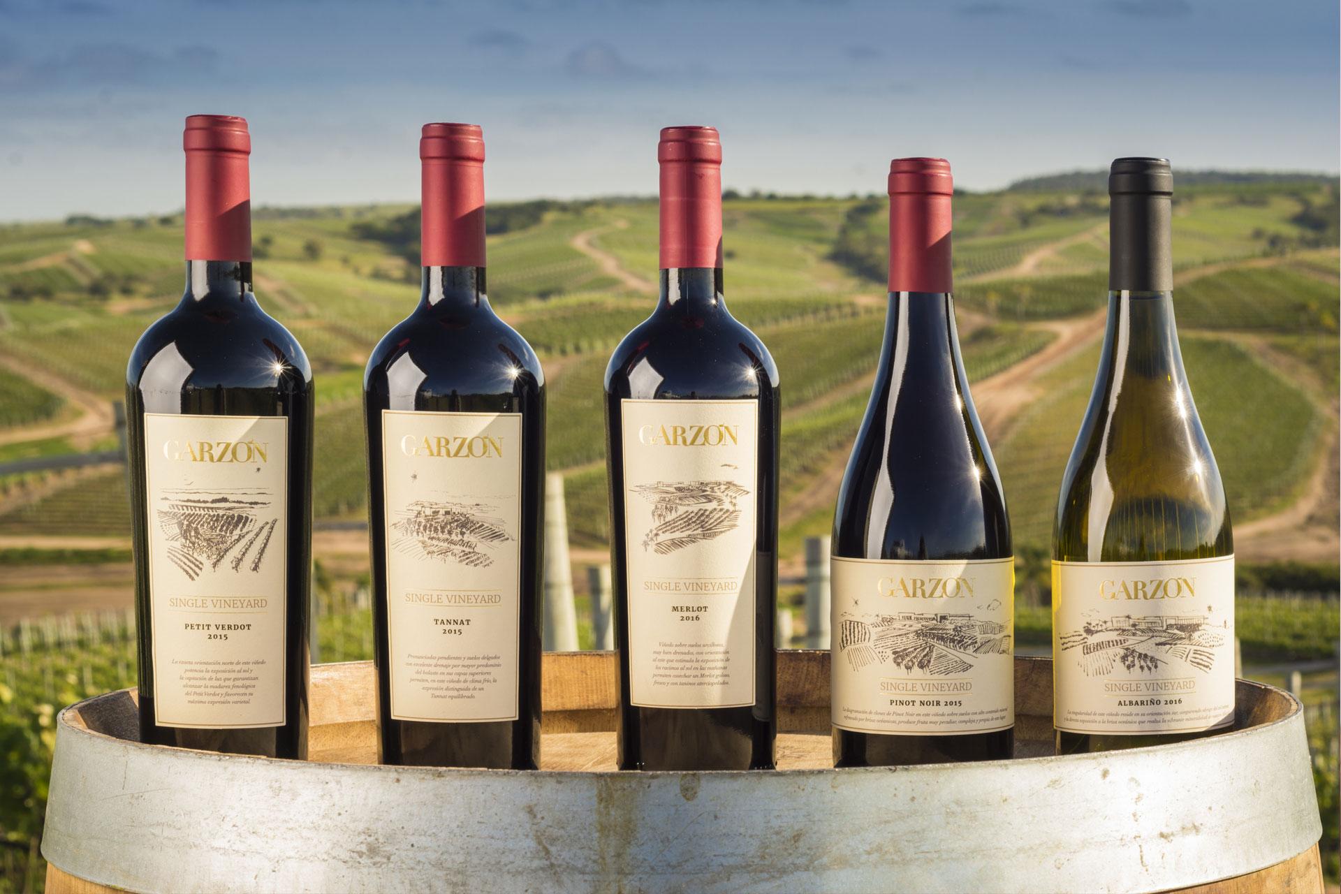 garzon albarino single vineyard